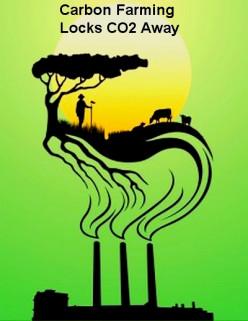 Carbon Farming - Storing Carbon in Soils, Vegetation Offsets Emissions