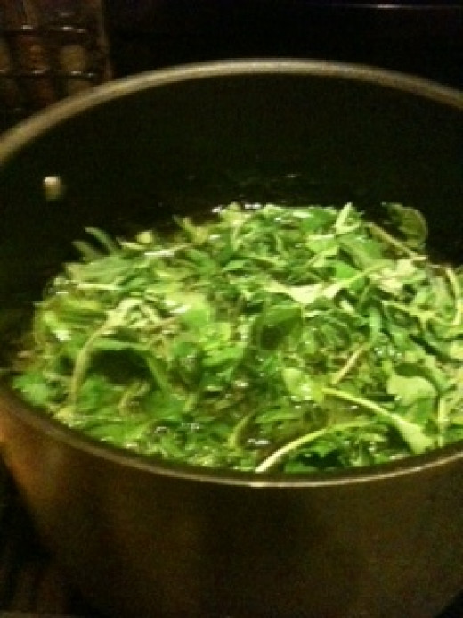 Kale is healthful and delicious