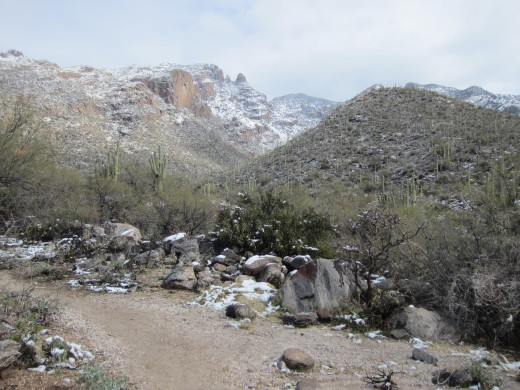 Snow along Tucson's Finger Rock Trail in in mountains ahead.