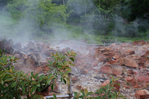 A steam vent along the west flank of Miravalles Volcano.  This site is located near three popular hot springs resorts mentioned below, and is accessible through the Guayacan resort.  It is about 700 meters from where the first photo was taken.