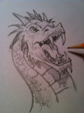 Drawing a Dragon's Head