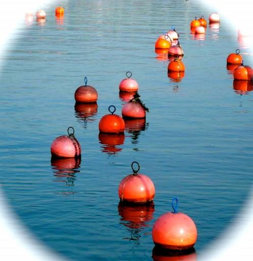 A Sea of Buoys