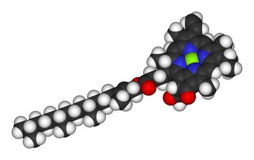 Chlorophyll Molecule with green Magnesium ion.