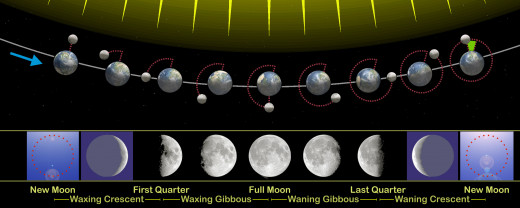 The moon phases in relation to it's orbit around the Earth.