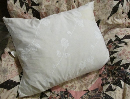 Old feather pillow has loads of small curly feathers your birds can use in their nests.
