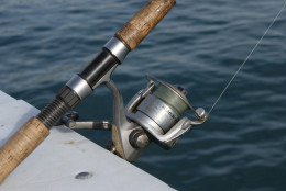 A Typical Shimano Spinning Reel for Bass