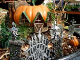 Spooky fairy garden.