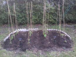 My freshly planted garden.