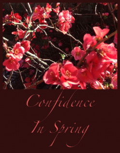 Confidence In Spring