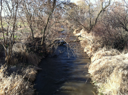 Creek Near Intersection of Old Milton Highway and Pepper Bridges Road