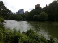 Visiting Central Park in New York City is a Must!