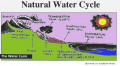 Learn About the Water Cycle for Kids