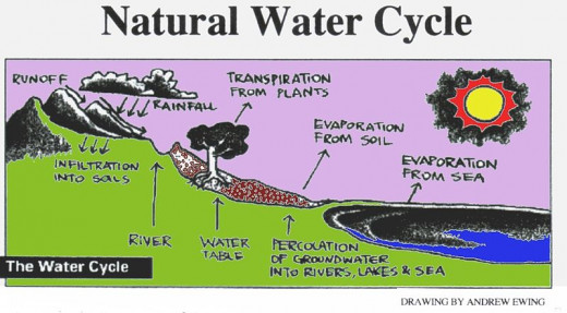 Simple Water cycle