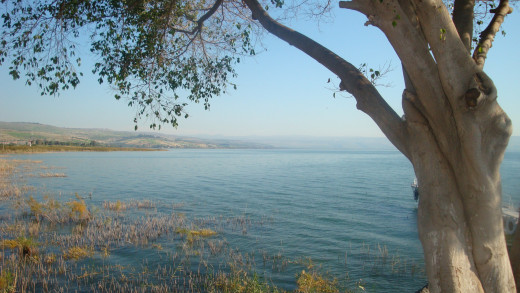 The docking site by the Sea of Galilee. Image is the property of Comfort Babatola -Copyright Protected