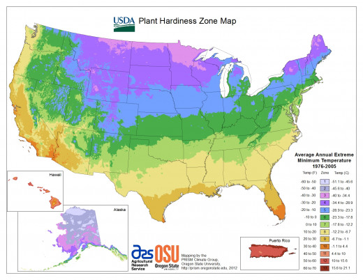 A simplified national map created at the USDA website in medium resolution.