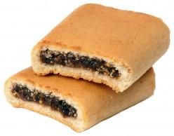 fig newton or fig cookie