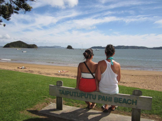 Taiputuputu Pahi Beach: This beach has been identified as being either an official or unofficial clothing optional beach with common nude use.
