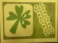 Border lattice adhered to card