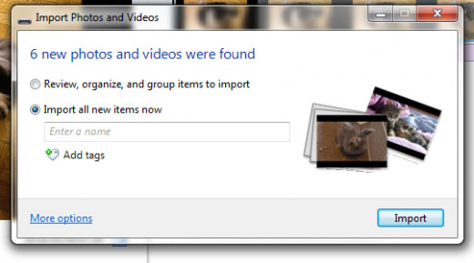 Choose between importing only new content or all of your content.