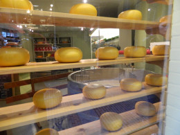 My daughter & I love cheese so we enjoyed visiting the many cheese factories !