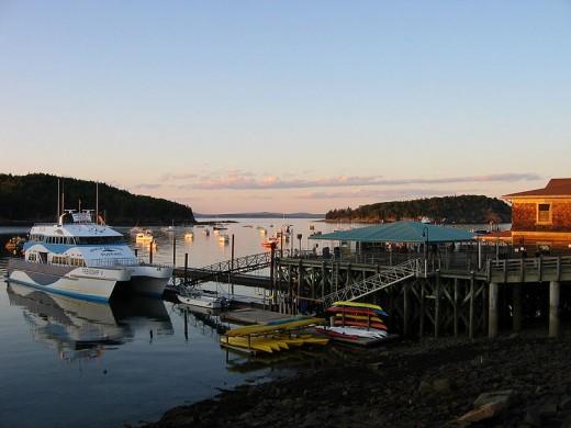 A Maine Cove.