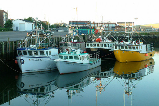 Maine fishing boats.