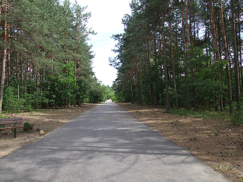 """Himmelstrasse: The Road to Heaven"""" (to the gas chambers and place of shootings)."""