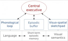 The improved version of Baddeley and Hitch's working model of memory with the added 'episodic buffer'.