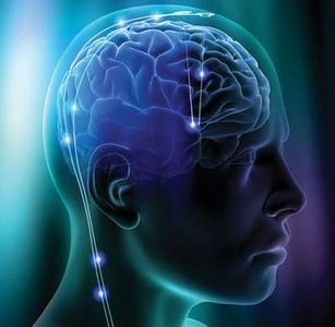 Effects of Drug Addiction on Brain Circuits