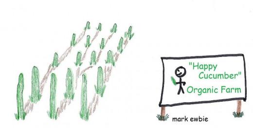 A Study in Cucumbers: Mark Ewbie