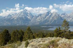 Tranquility of the Grand Teton