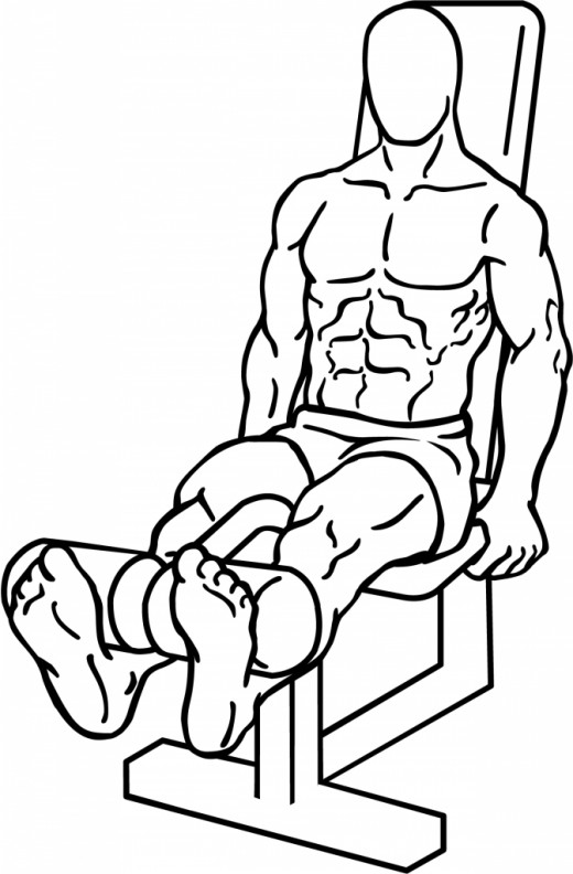 Knee extensions are the straightening of the knees against a resistive load.