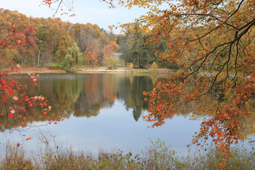 The lake at Hidden Lake Gardens, Michigan, in autumn. Beautiful!
