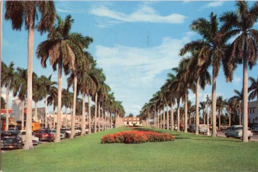 A classic photo of Palm Beach, Florida