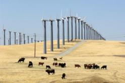 Alternative Energy Alternatives
