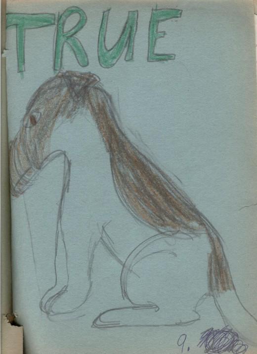 Third section: True--The illustration is my dog Mitsie