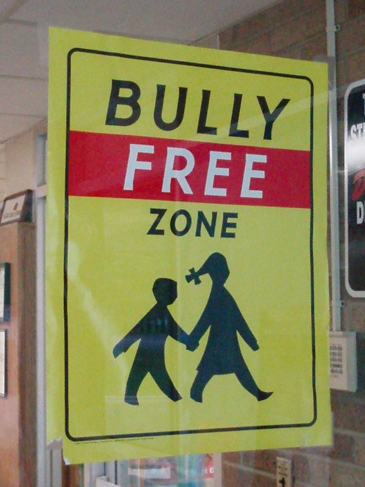 The internet needs to be a bully free zone.