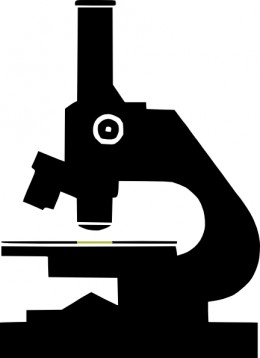 Here is the clip art file I used as a template. Resize as needed.