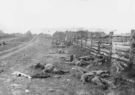 A picture showing Confederate dead, probably from the Louisiana brigade commanded by General Harry T. Hays.