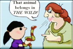 What to Say to People Who Are Against Exotic Pet Ownership