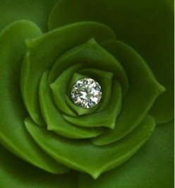 Eco Friendly Engagement Rings
