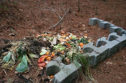 Add compost to the soil before planting. The good compost is under the fresh materials.