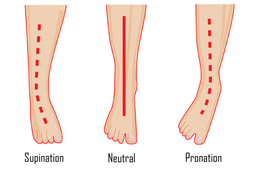 Pronation and Supination of the Foot Diagram with Neutral