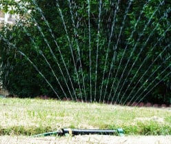 East Texas Lawns and Lawn Maintenance