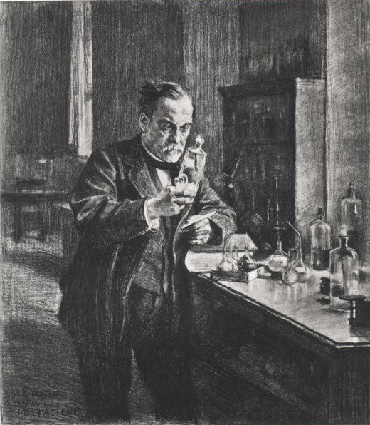 Louis Pasteur invented the process of pasteurization used on most modern milk