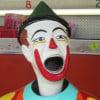 maddot profile image
