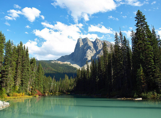 Emerald Lake is the largest lake in Yoho National Park