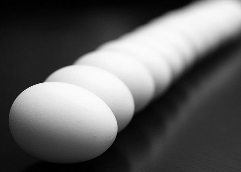 Why should you eat eggs? Because they are one of the richest sources of protein