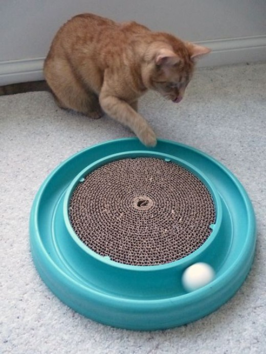 The Bergan TurboScratcher is great for both scratching and playing which keeps cats away from furniture.