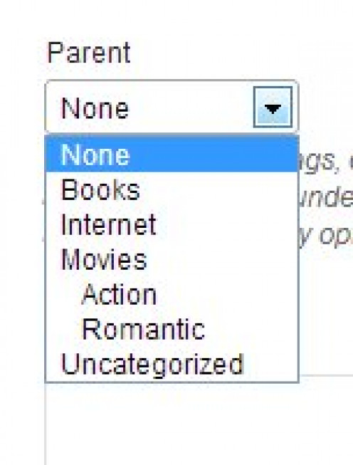 CHOOSE A PARENT CATEGORY FOR YOUR SUB-CATEGORY FROM THE DROP DOWN MENU